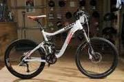 Giant 2011 Reign 2 Bike