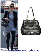 Free shipping, wholesale Chanel bags, Fendi bags, Hermes Handbag, Coach wa